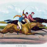 馬の競走データ